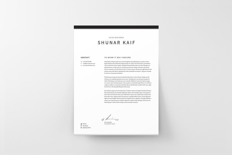 Resume - product preview 1