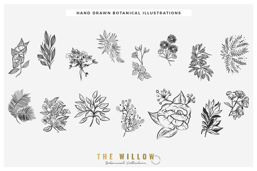 The Willow Graphic Collection - product preview 1