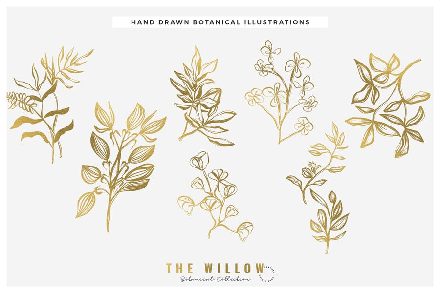 The Willow Graphic Collection - product preview 6