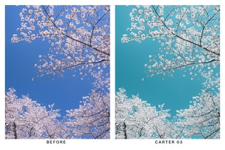 Thumbnail for 20 Azure Lightroom Presets and LUTs