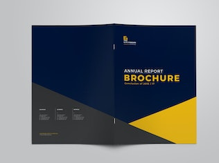 Thumbnail for Annual Report Brochure